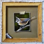 Trompe l'oeil with European Crested Tit 2014 oil on canvas 30x30cm
